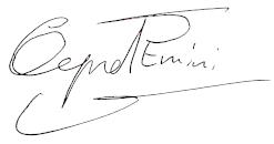 Qemal Emini Signatur - Social Media Beratung